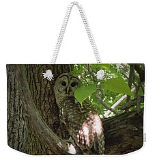 Owl With Leaf Weekender Tote Bag