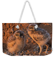 Owlet Siblings Weekender Tote Bag