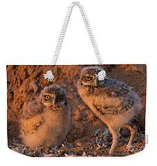 Owlet Siblings Weekender Tote Bag by Sue Cullumber