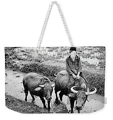Weekender Tote Bag featuring the photograph Oxen Day Off.cambodia Bw by Jennie Breeze