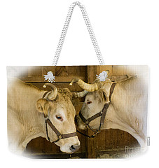 Oxen Team Weekender Tote Bag by Kevin Fortier