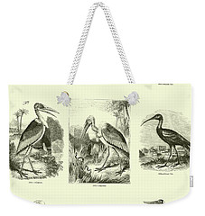 Page From The Pictorial Museum Of Animated Nature  Weekender Tote Bag by English School