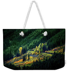 Weekender Tote Bag featuring the photograph Painted By A Sunbeam by Mary Jo Allen