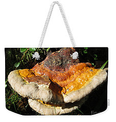 Painted By Fairies Weekender Tote Bag
