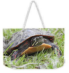 Weekender Tote Bag featuring the photograph Painted Turtle by Betty-Anne McDonald