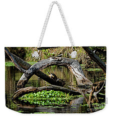 Painted Turtles Weekender Tote Bag