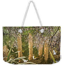 Palace Grounds 2007 Weekender Tote Bag