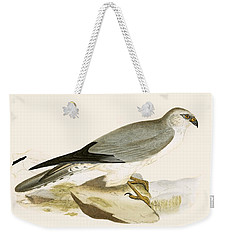 Pale Chested Harrier Weekender Tote Bag by English School