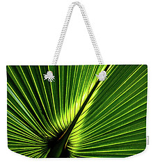 Palm Tree With Back-light Weekender Tote Bag