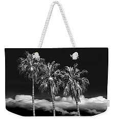 Weekender Tote Bag featuring the photograph Palm Trees In Black And White On Cabrillo Beach by Randall Nyhof