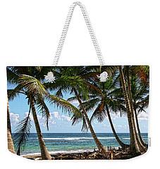 Palm Walk Weekender Tote Bag by Robert Och