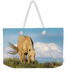 Palomino Wild Stallion In The Evening Light Weekender Tote Bag
