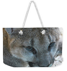 Weekender Tote Bag featuring the photograph Palus by Laddie Halupa