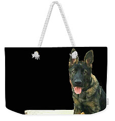 Weekender Tote Bag featuring the photograph Panzer At Home In Germany by Janette Boyd