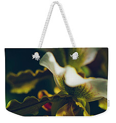 Weekender Tote Bag featuring the photograph Paphiopedilum Villosum Orchid Lady Slipper by Sharon Mau