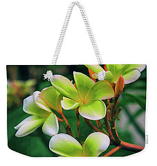 Paradise Weekender Tote Bag by Dennis Baswell