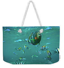 Parrot Fish Weekender Tote Bag by Tim Fitzharris