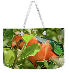 Weekender Tote Bag featuring the photograph  Parrot In Apple Tree by Werner Padarin