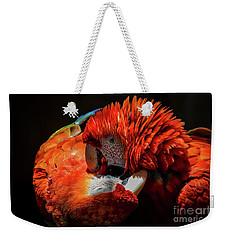 Parrots Weekender Tote Bag by Mitch Shindelbower