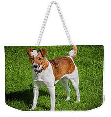Parson Jack Russell Weekender Tote Bag