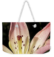 Weekender Tote Bag featuring the photograph Partitioned Lily by Jean Noren