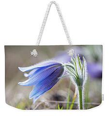 Pasque Flower's Silver Grey Hair Weekender Tote Bag