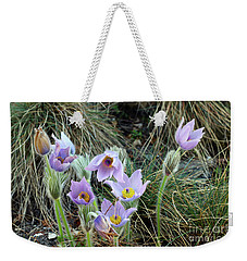 Weekender Tote Bag featuring the photograph Pasqueflower by Michal Boubin