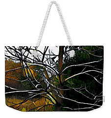 Weekender Tote Bag featuring the photograph Past The Branches by Diane Miller