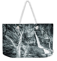 Weekender Tote Bag featuring the photograph Patagonian Waterfall by Andrew Matwijec