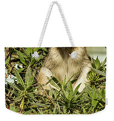 Patas Monkey Weekender Tote Bag
