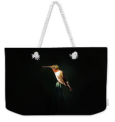Patch Of Morning Sun Weekender Tote Bag