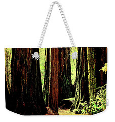 Path Through The Forest Edge . 7d5432 Weekender Tote Bag