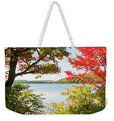 Weekender Tote Bag featuring the photograph Path To The Lake by Elena Elisseeva