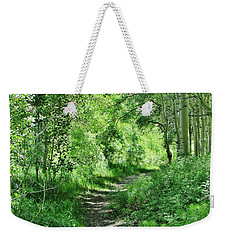 Pathway Weekender Tote Bag by Marilyn Diaz
