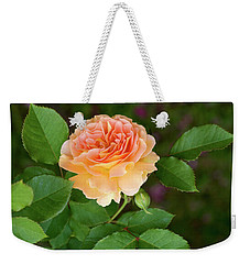 Peace In The Garden - Peace Rose Weekender Tote Bag