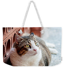 Weekender Tote Bag featuring the photograph Peace by Laura Melis