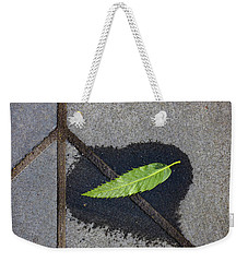 Weekender Tote Bag featuring the photograph Peace On Earth by Steve Taylor