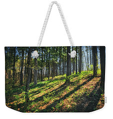 Peaceful Forest 4 - Spring At Retzer Nature Center Weekender Tote Bag by Jennifer Rondinelli Reilly - Fine Art Photography