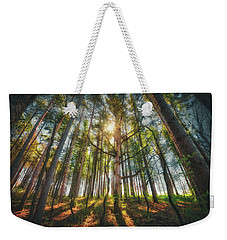 Peaceful Forest 5 - Spring At Retzer Nature Center Weekender Tote Bag by Jennifer Rondinelli Reilly - Fine Art Photography
