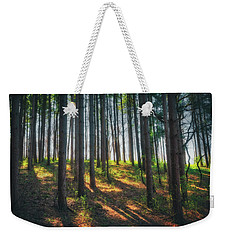 Peaceful Forest - Spring At Retzer Nature Center Weekender Tote Bag by Jennifer Rondinelli Reilly - Fine Art Photography