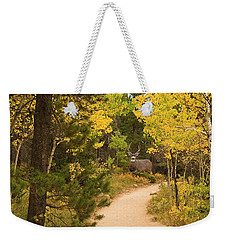 Peaceful Walk Weekender Tote Bag