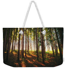 Peaceful Wisconsin Forest 2 - Spring At Retzer Nature Center Weekender Tote Bag by Jennifer Rondinelli Reilly - Fine Art Photography