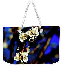 Peachcot Blooms Announce Spring In Colorado II Weekender Tote Bag