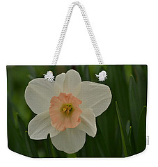 Peaches And Cream Weekender Tote Bag