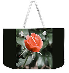 Peachy Rose Weekender Tote Bag by Rand Herron
