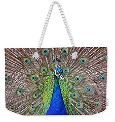 Peacock Displaying His Plumage Weekender Tote Bag by Jim Fitzpatrick