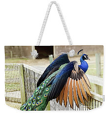Weekender Tote Bag featuring the photograph Peacock In Flight by Melissa Messick