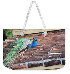 Peacock On Rooftop Weekender Tote Bag