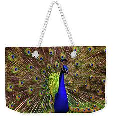 Peacock Showing Breeding Plumage In Jupiter, Florida Weekender Tote Bag