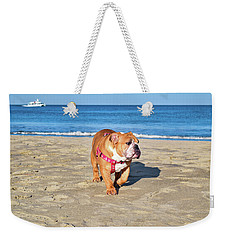 Peanut On The Beach Weekender Tote Bag